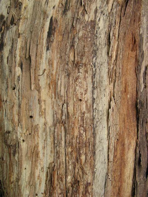 pattern wood free pdf free wood pattern plans free