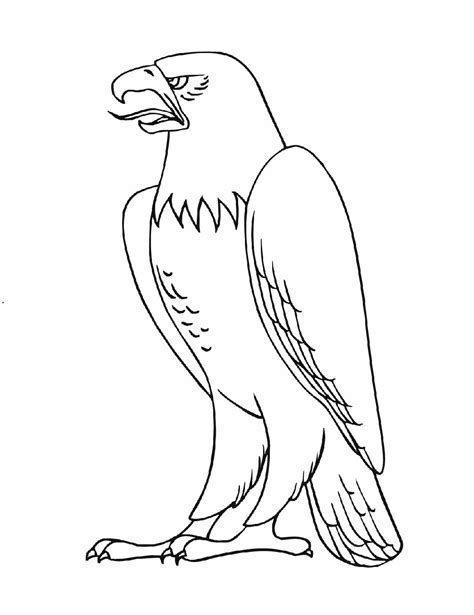 eagle coloring pages preschool eagle coloring pages for kids preschool and kindergarten