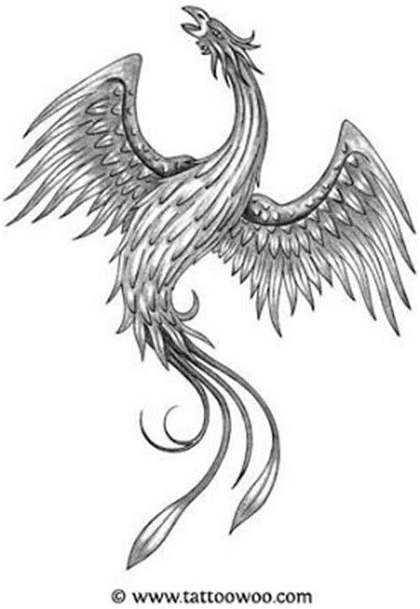 black and white phoenix tattoo designs tattoos black and white designs