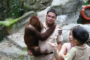 Animal Trainers Salary by With Animals And Salary
