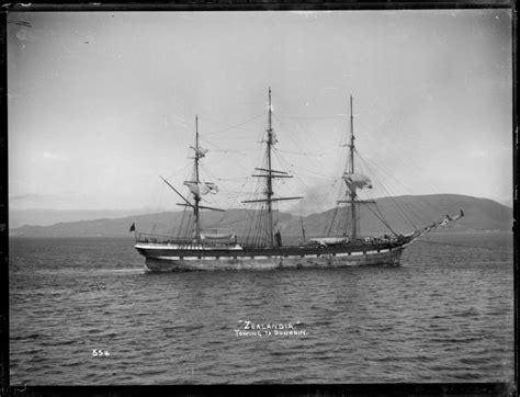 ship zealandia zealandia