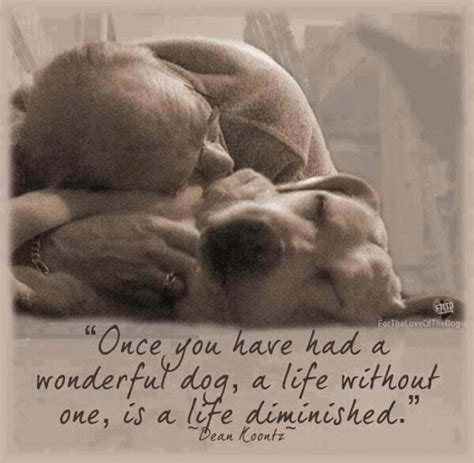 images of love dogs quotes love my dog quotesgram