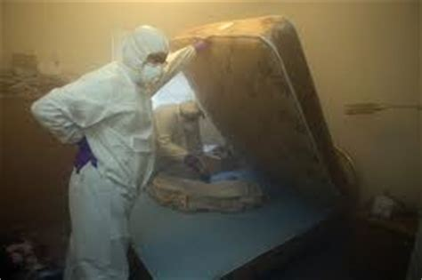fumigation for bed bugs a1 pest control canberra 187 bed bug fumigation