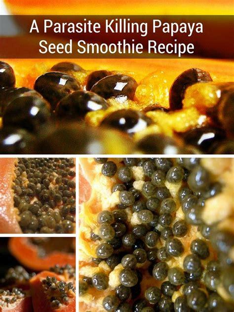 Papaya Seed Detox Recipe by Antiparasitic Foods Foodfash Co