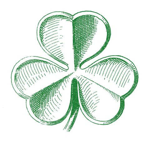 clipart domain domain clip shamrocks st s day