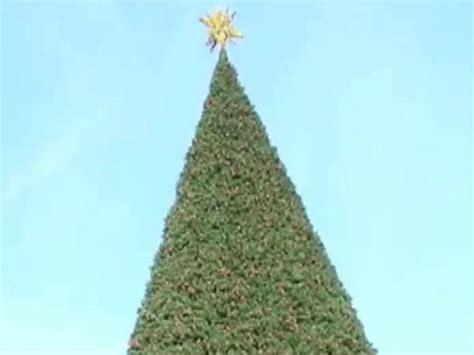 delray beach tree lighting 2017 delray beach considers buying new 800k christmas tree