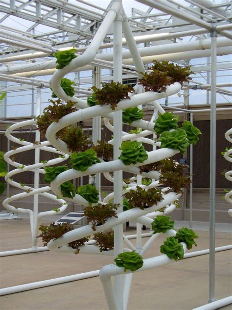 Vertical Garden Hydroponics Beautiful Hydroponics Hobby Farms Growing Food