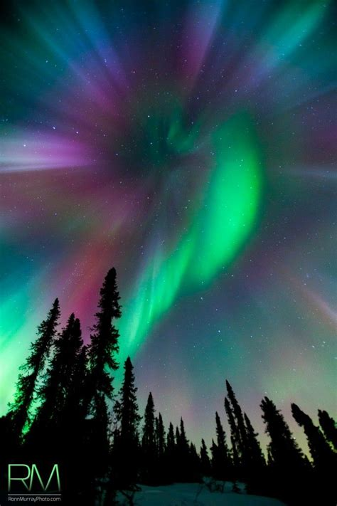 northern lights aurora borealis fairbanks alaska 14 best images about aurora in fairbanks alaska on