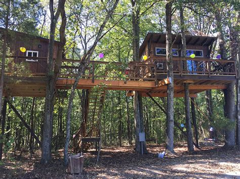 cherry treesort 8 amazing treehouses you can book on airbnb right now agenda