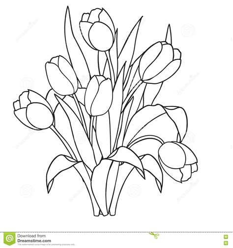 black and white coloring pages of flowers tulips flowers ornamental black and white coloring