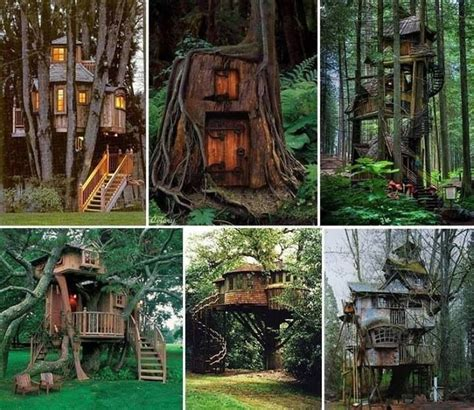 best treehouses best treehouses ever treehouse retreats pinterest