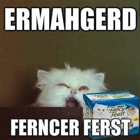 Ermahgerd Animal Memes - 43 best images about ermahgerd animals on pinterest baby