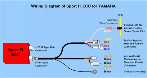 wiring diagram ecu new vixion gallery diagram sle and