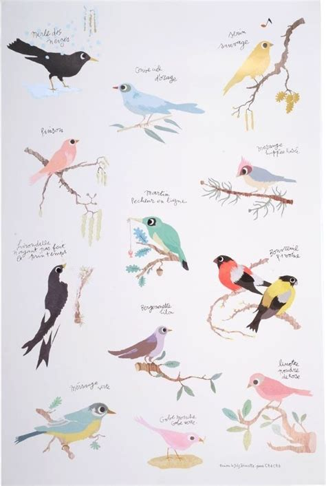 tinou oiseaux poster  combination     love