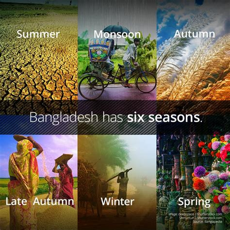 six seasons bangladesh and it s six seasons pro net mk