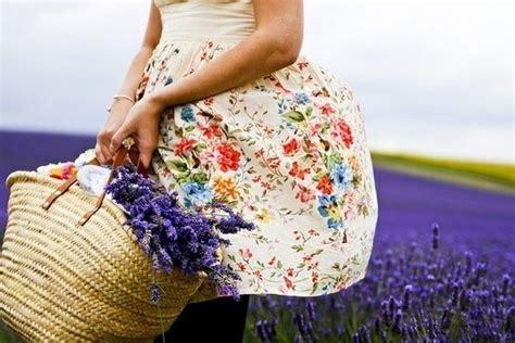 fiori di lavanda essiccati infuso di lavanda infusi lavanda infuso