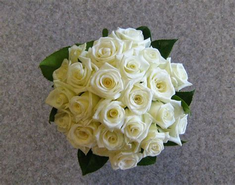 wallpaper bunga lucu gambar bunga mawar putih love kumpulan gambar gambar