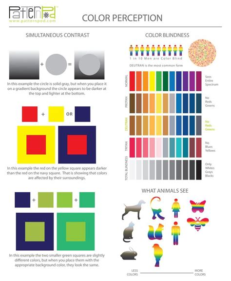 color pattern formation model 7 best images about infographics on pinterest icons we