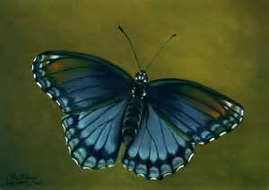 spotted purple butterfly painting by faith te
