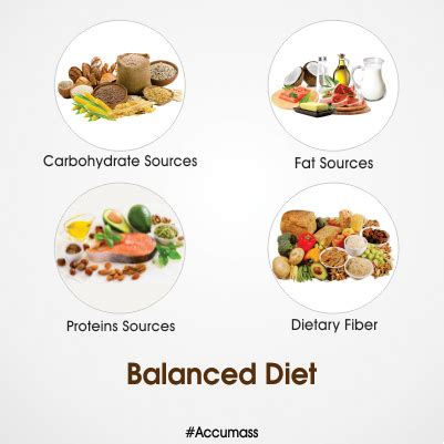 protein rich diet protein rich diet for weight gain what foods to eat to