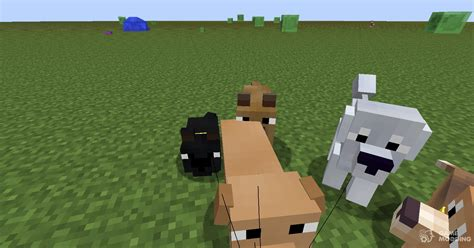 copious dogs mod  minecraft