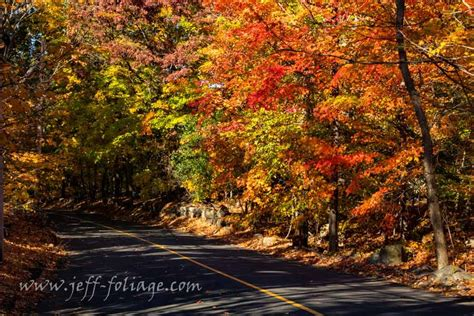 fall foliage in new england 2017 fall forecast for june 2017 new england fall foliage