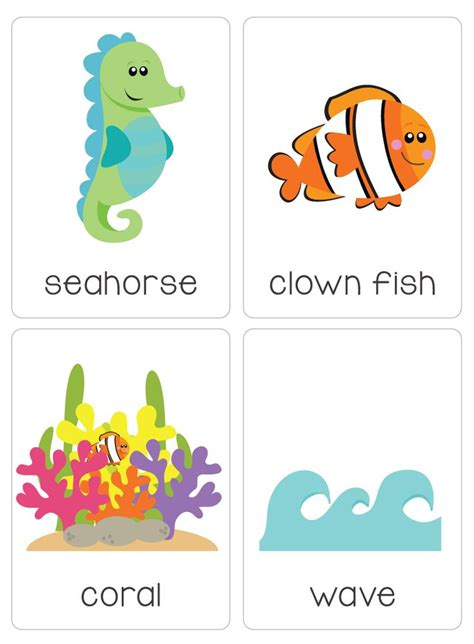 ocean animal flashcards under the ocean flash cards automatic download the ocean