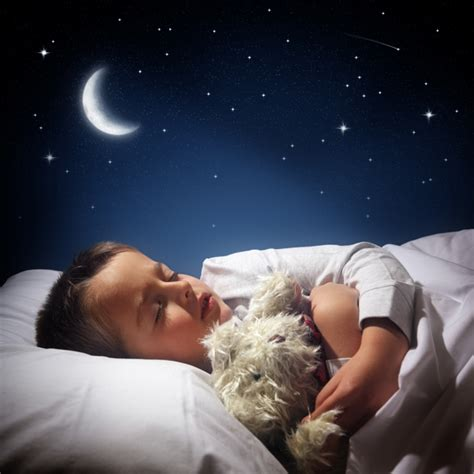 wie viel stunden schlaf braucht scinexx langschl 228 fer oder kurzschl 228 fer wie viel