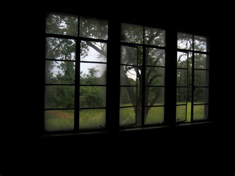 haunted house window haunted house windows photo 1497150 freeimages com