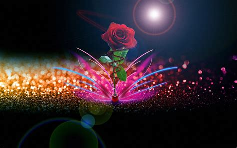 Beautiful red rose and an abstract shiny background