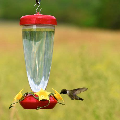 perky pet humming bird feeder walmart canada