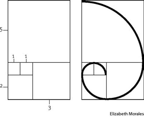 pattern definition for science fibonacci sequence define fibonacci sequence at