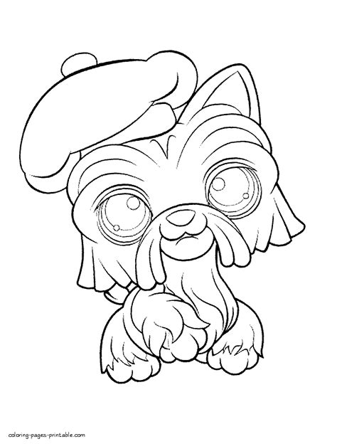 lps peacock coloring page click the littlest pet shop peacock coloring pages