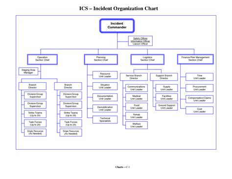 7 Best Images Of Incident Command System Flow Chart Ics Incident Command System Chart Ics Organizational Chart Template