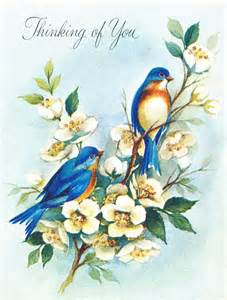 collage bird images from vintage greeting cards