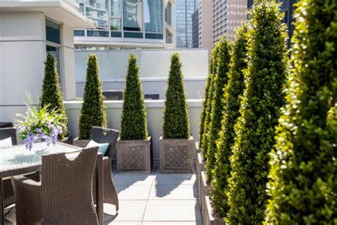Baroque Boxwood Topiary vogue Vancouver Contemporary Patio