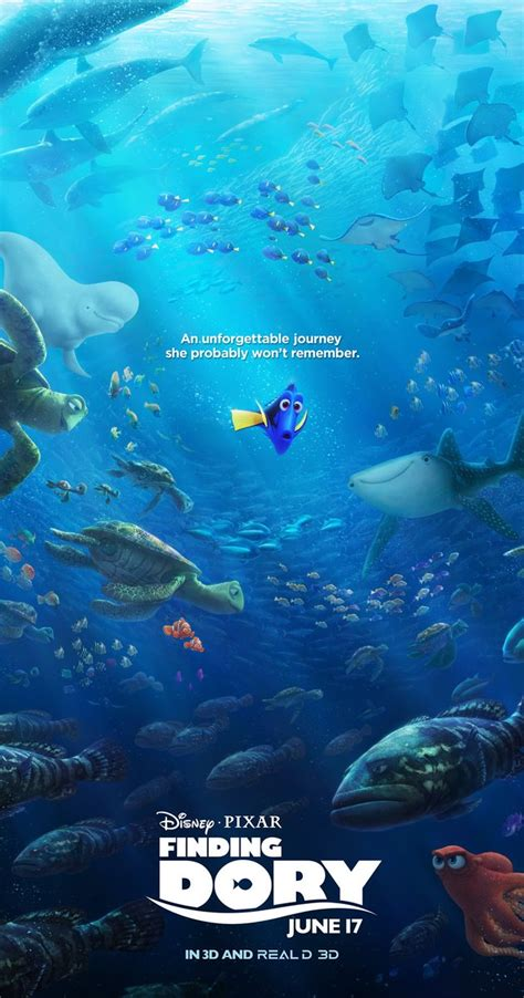 collision course the classic story of the collision of the andrea doria and the stockholm books finding dory 2016 imdb