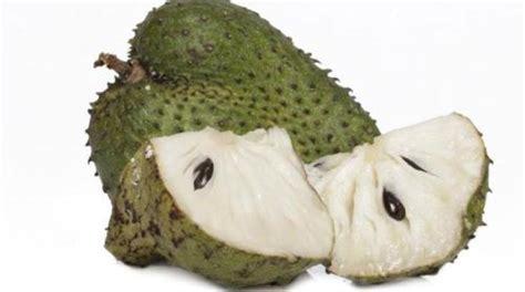 buah sirsak kabarimbo kabarimbo