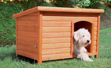 hinged roof dog house new flat hinged roof x large weatherproof wood petdog house doghouse glazed pine ebay