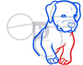 How To Draw A Pit how to draw baby pitbulls baby pitbulls step by step