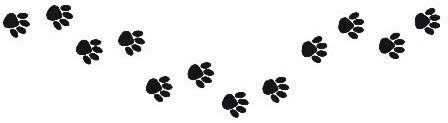 paw print trail | www.pixshark.com images galleries with