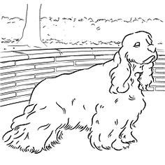 1000 images about coloring book dogs on pinterest