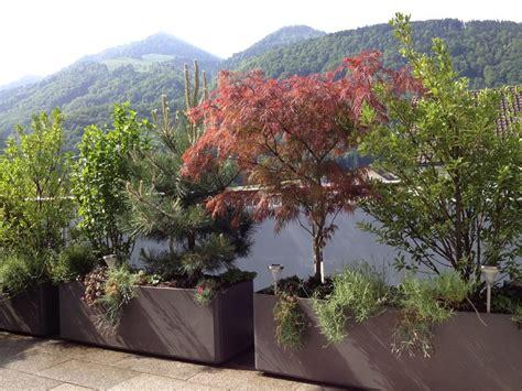 terrassenbepflanzung praktische tipps und kreative ideen