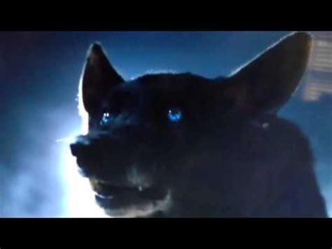 5 11 Black Wolf Blue 16010 derek hale black wolf evolving 4x12