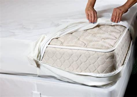 bed bug mattress covers encasements pestseek