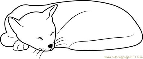sleepy cat coloring page sleeping cat looks cute coloring page free cat coloring