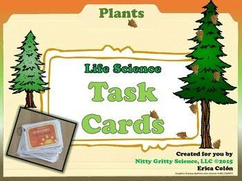 two against the sea tasks for vegetation science books plants science task cards