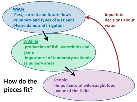 theme of education in the river between links between water wildlife and people in the