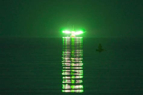 squid fishing at night from a boat something fishy in the atlantic night