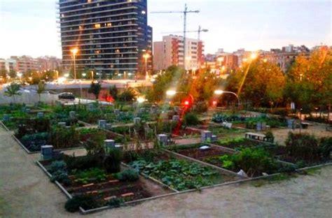 imagenes de huertas urbanas pregonao en marmolejo los huertos urbanos van ganando